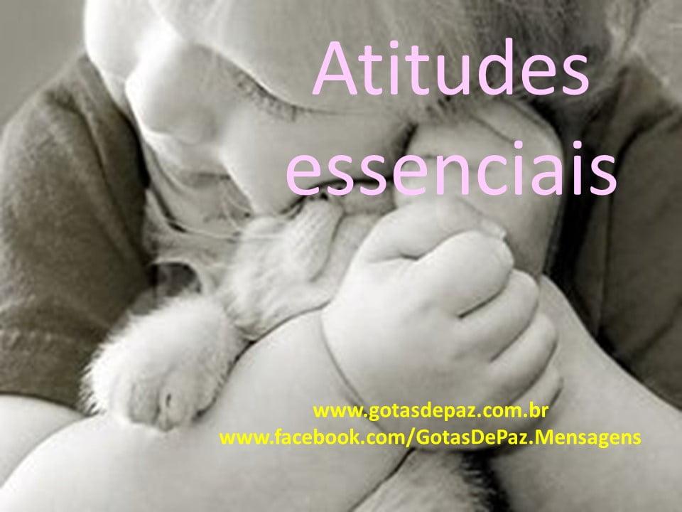 Atitudes essenciais