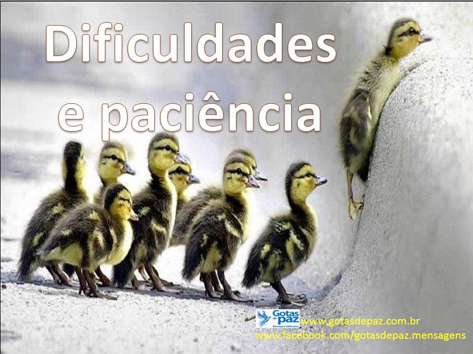 Dificuldades e Paciência