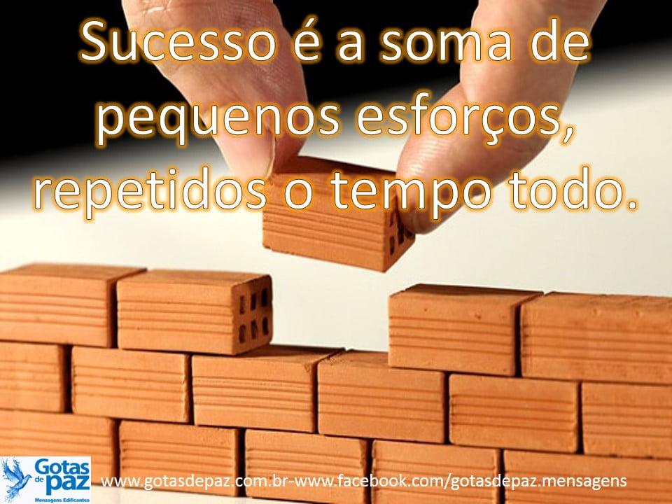 Sucesso é a soma de pequenos esforços, repetidos o tempo todo.