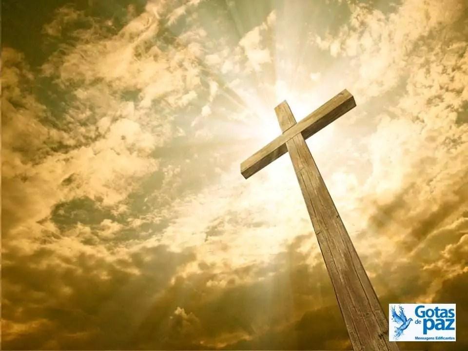 Ame a sua  cruz