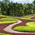 """בשטח אדיר של כ-2,600 ק""""ר שוכנים הגנים הטרופיים של """"נונג נוץ'"""" הממוקמים כ-15 ק""""מ דרומית לפאטיה. במקום בית גידולים לסחלבים, גן קקטוסים גדול וזני צמחים מכל רחבי הגלובוס. בגן ניתן […]"""