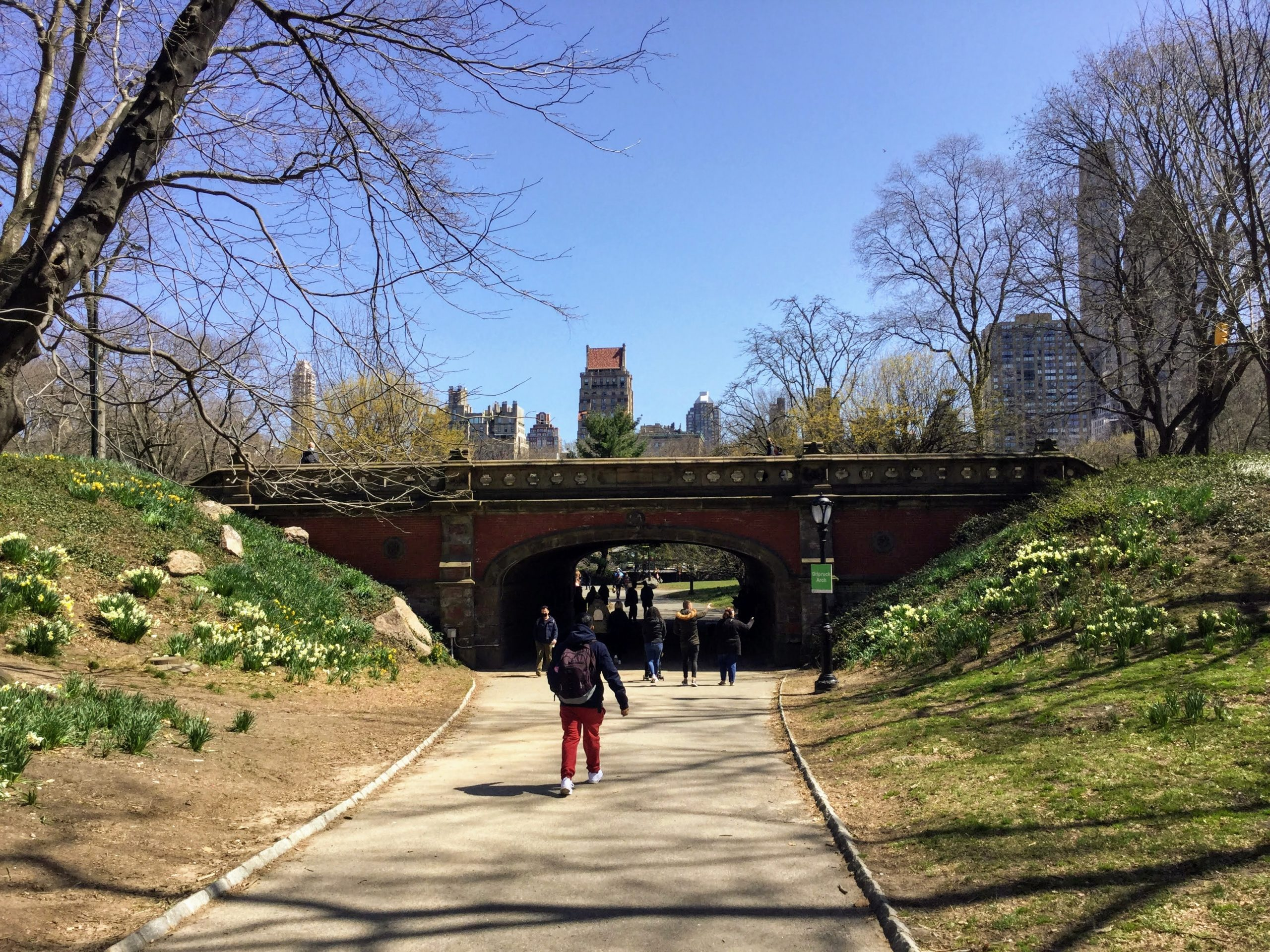Early Spring in Central Park
