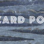 Release: Lizard Pool – Spark (27.09.2018)