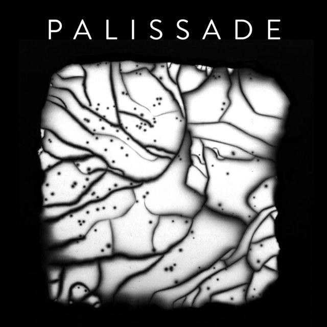 """Debütalbum von Palissade – """"Palissade"""""""