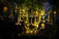 The Witchs Garden