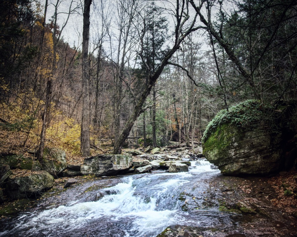 A Catskill stream from Haunted Travels in the Hudson River Valley of Washington Irving
