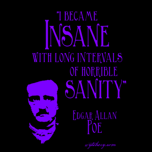 """""""I became Insane with long intervals of horrible sanity,"""" Edgar Allan Poe"""