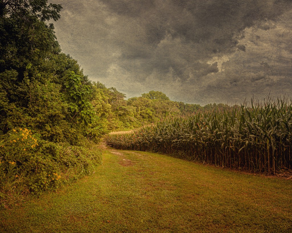The road to Baker Cemetery, haunted by the White Lady