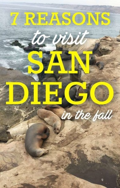 Things to do in San Diego in the Fall
