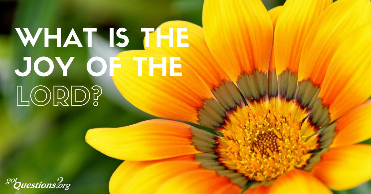 What is the joy of the Lord