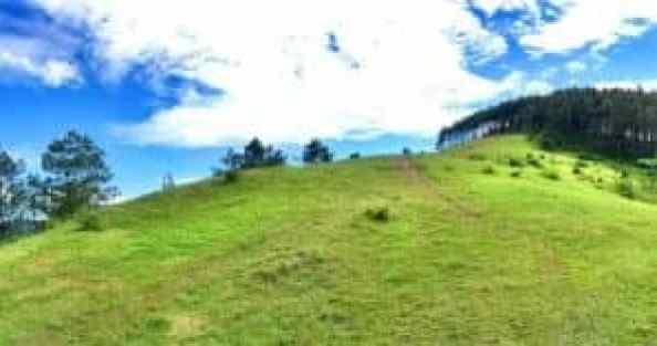Tempat Wisata Ponorogo