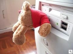 Usb_bear