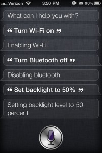 Siri Toggles Settings