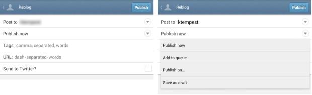Tumblr Post Options