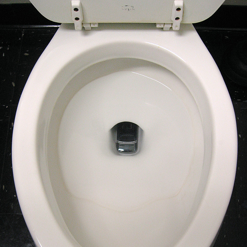 cell phone toilet