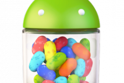 The Verizon Galaxy Nexus will get an ICS update before Android 4.1 Jelly Bean.
