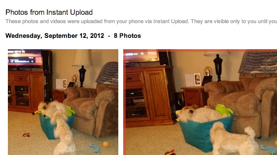 Google Instant Upload Saves Photos
