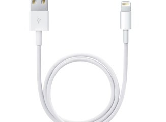 Apple short Lightning cable
