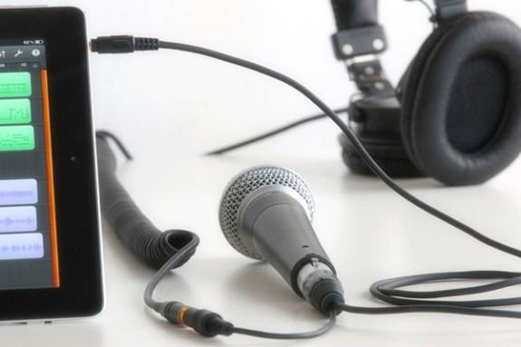 cablejive projive xlr with mic