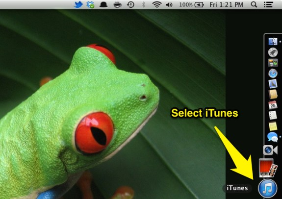 Select iTunes