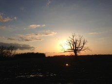 iPhone 5 Sunset Photo Sample.