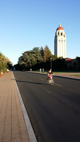 """In good lighting, the camera can """"freeze"""" motion so you don't have motion blur, as you can see with the bicyclist here. Detail is lost in the shadows, an issue with the smaller sensor of a smartphone camera despite a high megapixel count."""