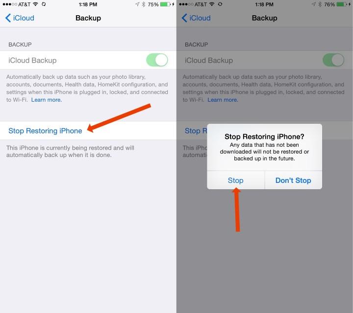 Stop your iCloud Restore.