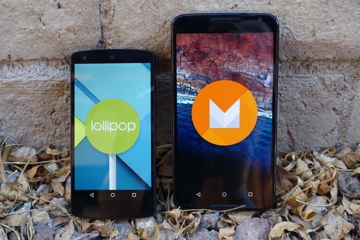 Two New Nexus Devices