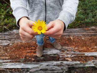 daisy.0
