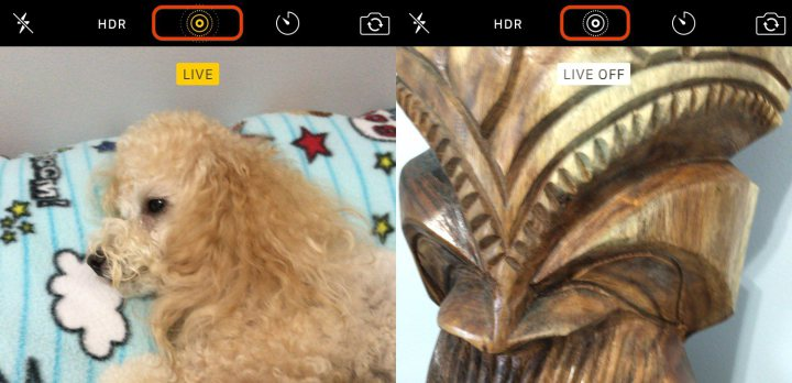 Live-Photos-iPhone-6s