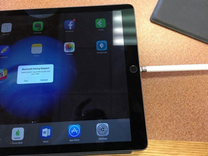 apple pencil plugged into ipad pro
