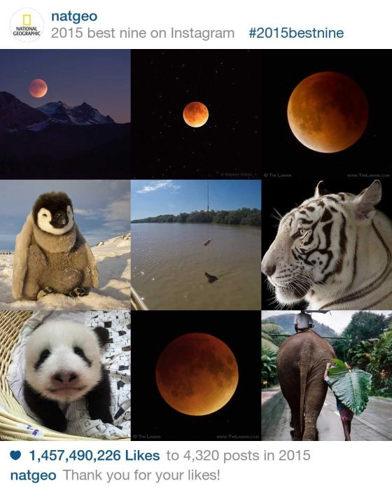 You can see others like the NatGeo best nine Instagram photos of 2015.
