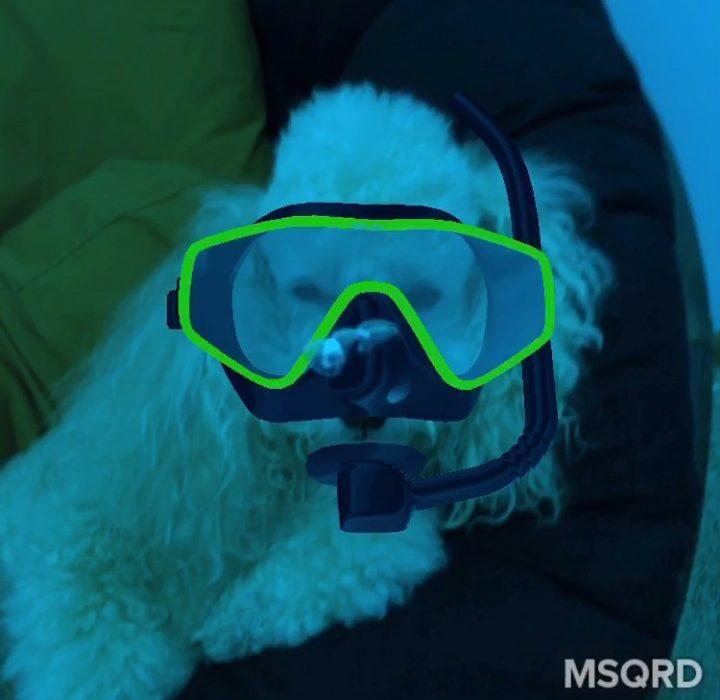 MSQRD App - 2