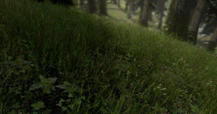 Skyrim-mod-grass
