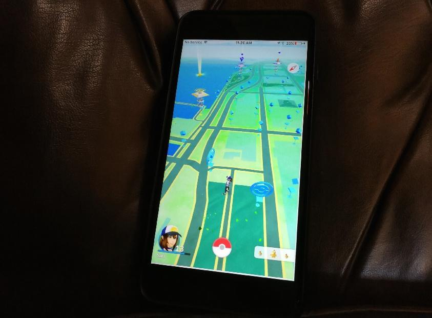 The map in Pokemon Go