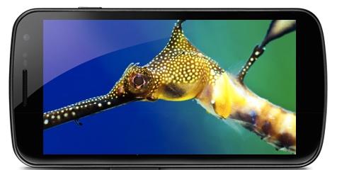 Galaxy Nexus Display - Large