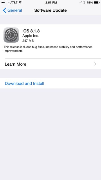 Tap on Download and Install to start.