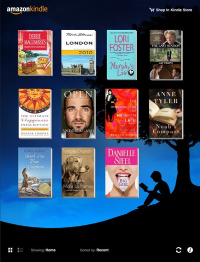 The Kindle app for iPad.