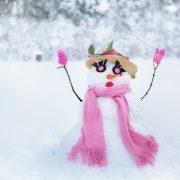 Image of a snowbitch