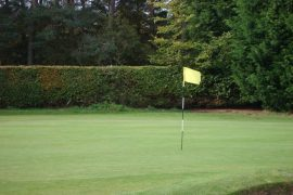 Image of flagstick on putting green