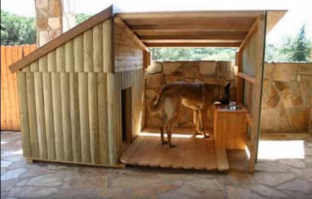 Video Shows Unique DIY Dog House Ideas For Your Furry Friend