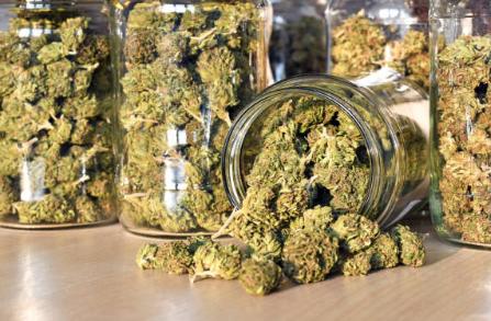 is weed medicine