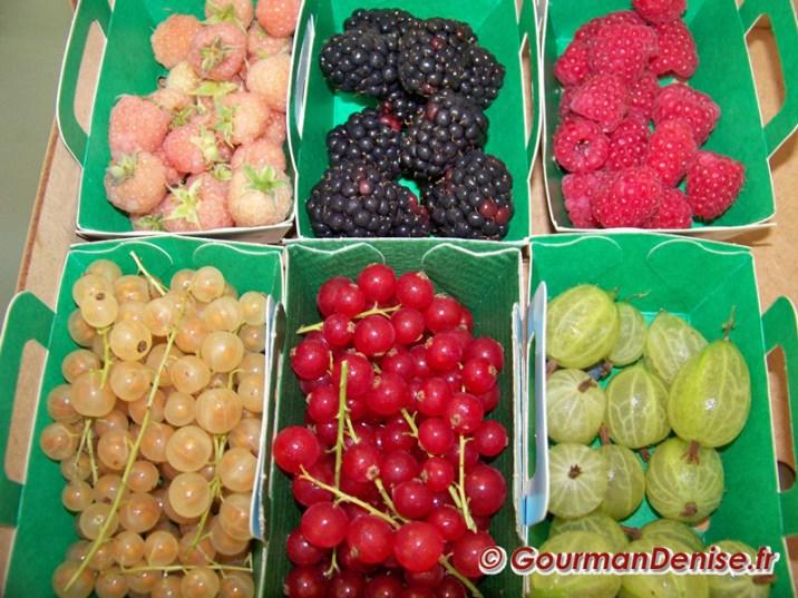 Gratin-de-fruits sabayon muscat