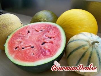 Melon-pastèque-1