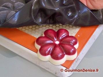 Pannacotta vanille framboises 7