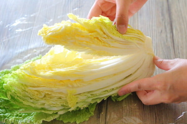 カット白菜の使い切り方法