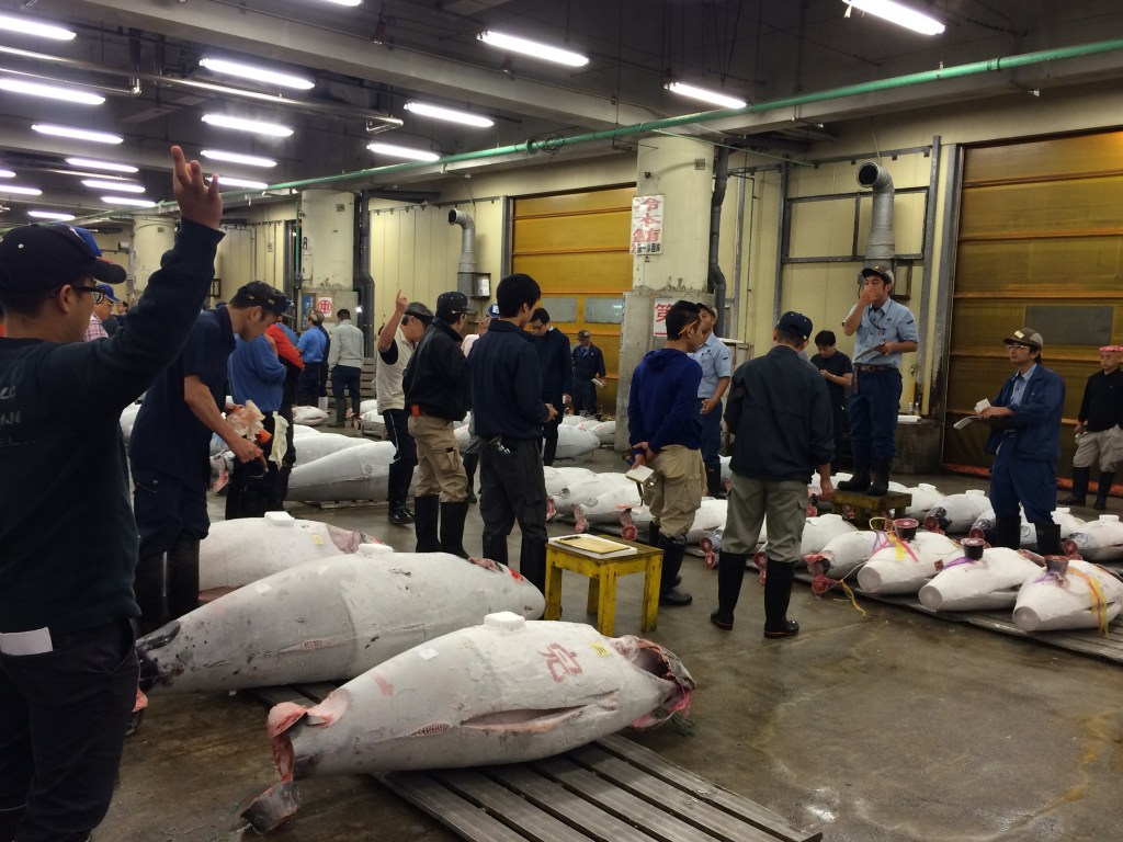 25 minutes and the tuna auction is done. Very cool experience.