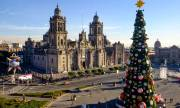 5 Things to do in Mexico City on New Year's Day (When Nearly Everything is Closed)