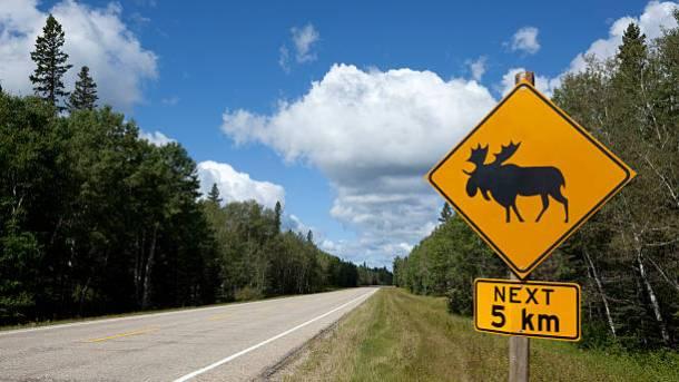 5 day road trip alaska