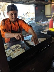 Craft Beers and Tacos: A Day Trip to Tijuana Worth the Journey